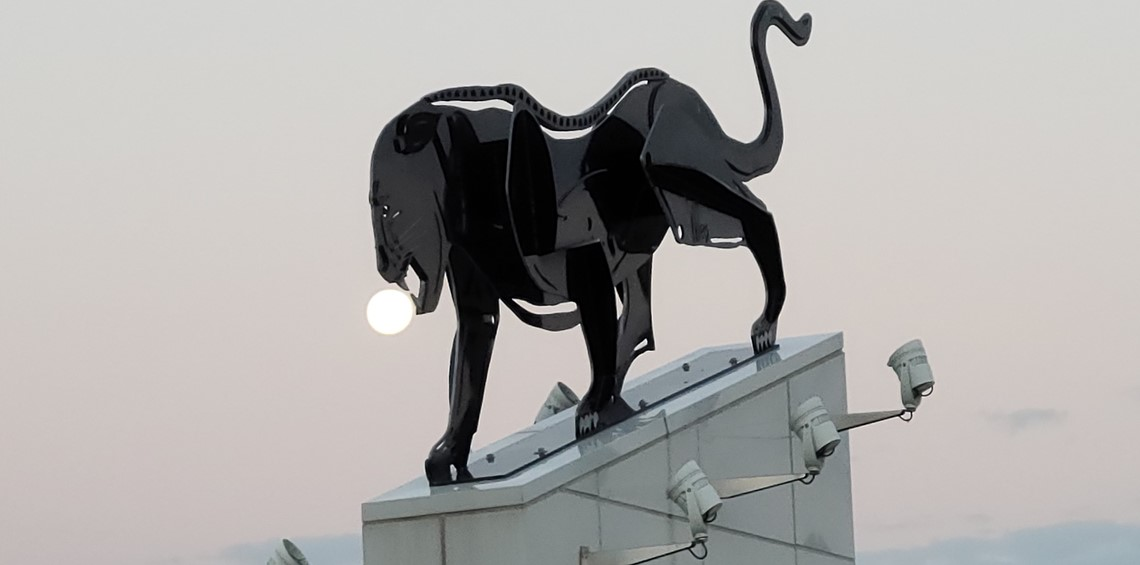 Panther bite out of moon